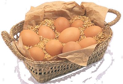 肉・卵・ハム・ソーセージ5 卵