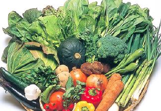 今週の野菜セット