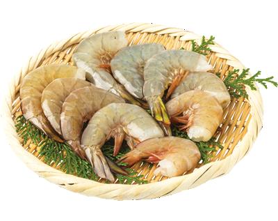 鮮魚・水産加工品5 エビ