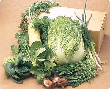 地場野菜1