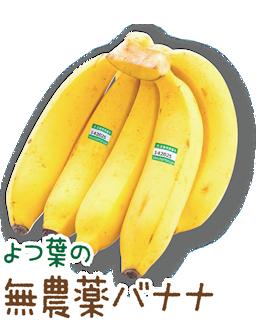 よつ葉の無農薬バナナ