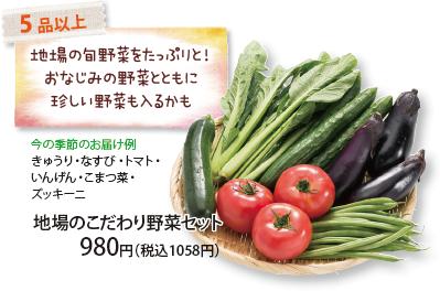 地場のこだわり野菜セット 5 品以上 地場の旬野菜をたっぷりと!おなじみの野菜とともに珍しい野菜も入るかも