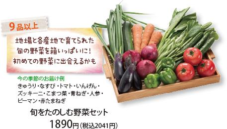 旬をたのしむ野菜セット 9 品以上 地場と各産地で育てられた旬の野菜を箱いっぱいに!初めての野菜に出会えるかも