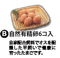 (B)自然有精卵