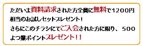 ただいま資料請求された方全員に無料で1200円相当のお試しセットプレゼント!さらにこのチラシにてご入会された方に限り、500よつ葉ポイントプレゼント!!