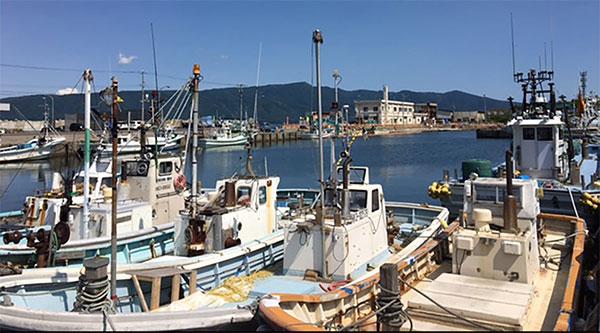寿都の漁港
