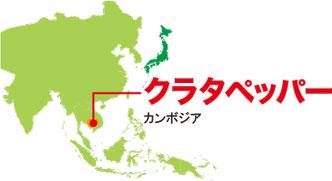 クラタペッパー カンボジア